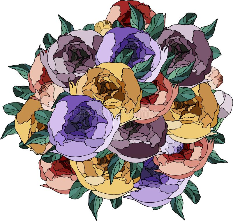 Peonies hermosos Flores en color Ramo de la peon?a libre illustration
