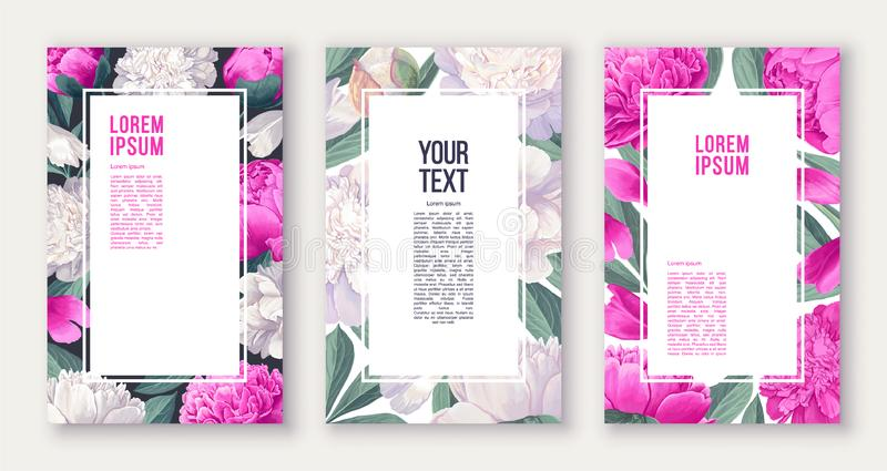 Set of floral posters with pink and white peonies flowers and leaves. vector illustration