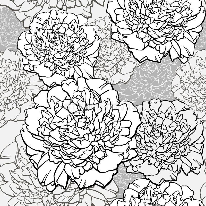peonies Progettazione della maglietta Stampa schizzata nei colori monocromatici - fondo senza cuciture del fiore Vettore disegnat royalty illustrazione gratis