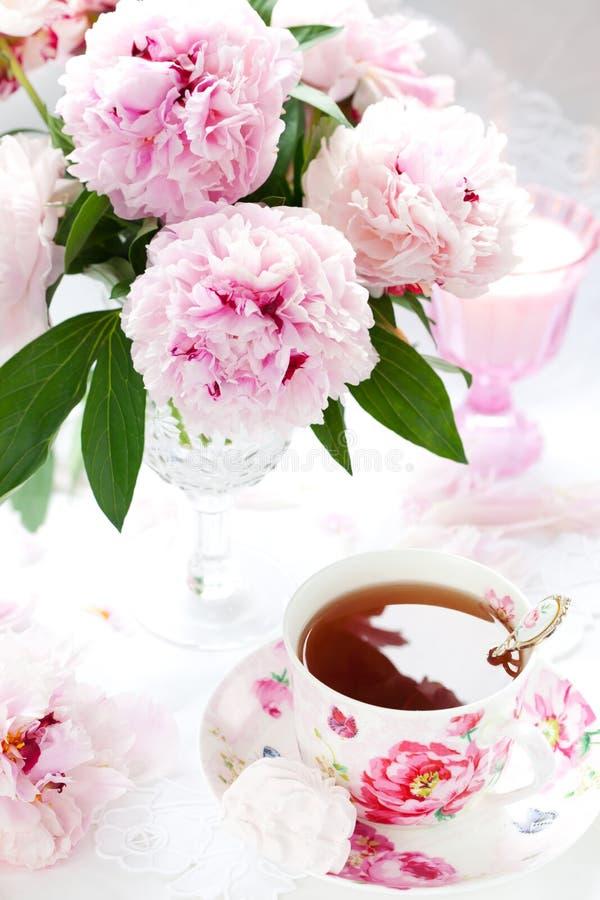 Peonies y taza rosados de té imagen de archivo libre de regalías
