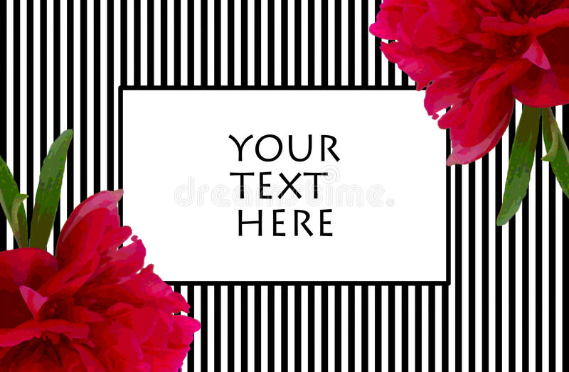 Peony Black And White Stripes Frame For Text Stock Illustration ...