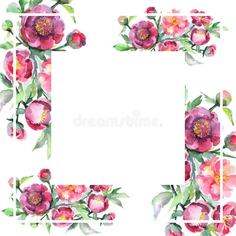 Peony bouquet floral botanical flowers. Watercolor background illustration set. Frame border ornament square. Peony bouquet floral botanical flowers. Wild royalty free illustration