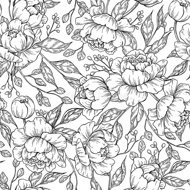 Peony flower seamless pattern drawing. Vector hand drawn engrave stock illustration