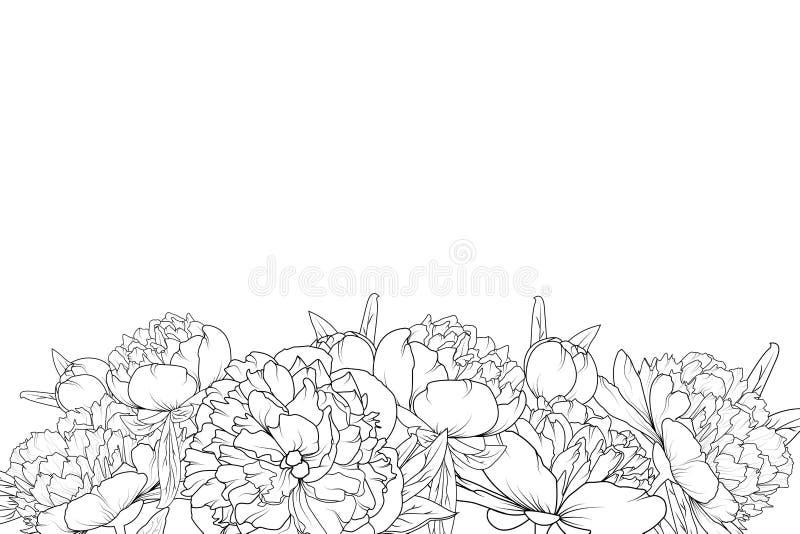 Line Drawing Flower Borders : Peony flowers black white bottom border frame stock vector