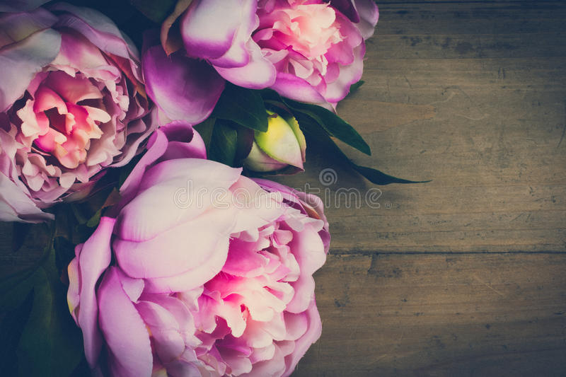Peony Flowers Vintage. Pink peony flowers on wooden background. Space for text. Old vintage look