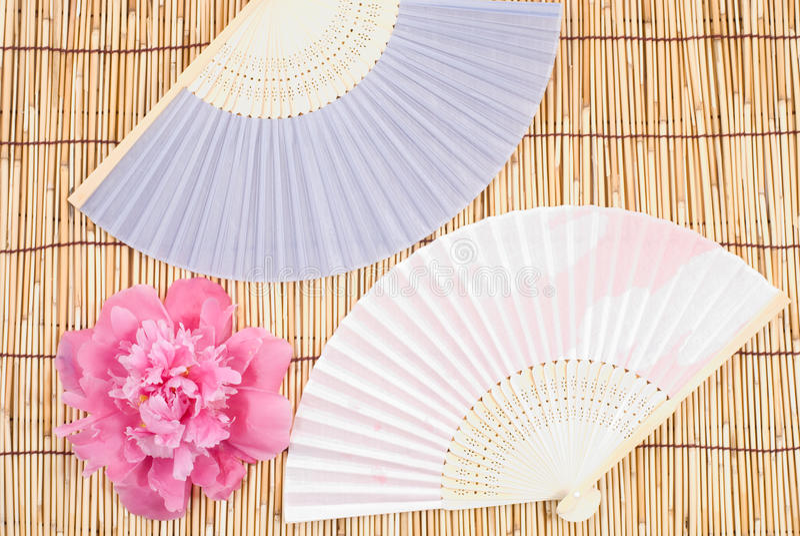 Peony and folding fan stock photo
