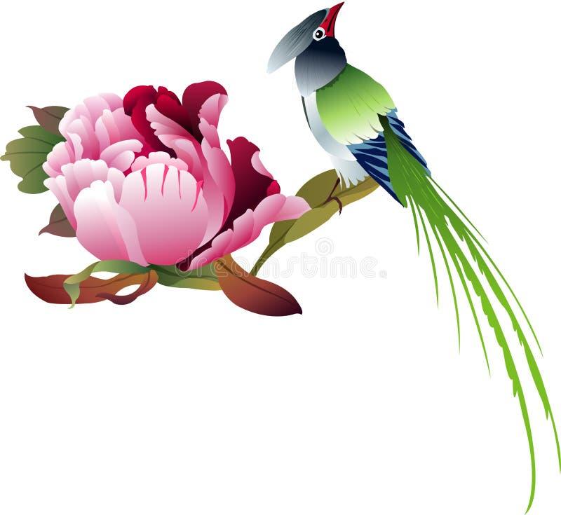Download Peony no Branco-vetor ilustração stock. Ilustração de valentine - 12800407