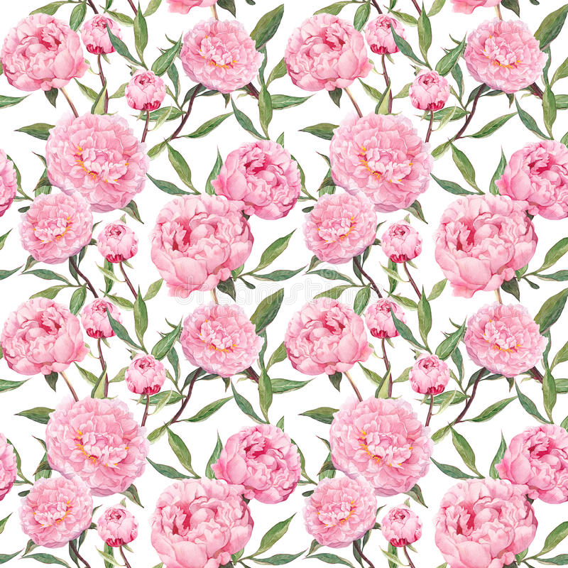 Peony pink flowers. Floral repeating pattern. Watercolor. Background stock photo