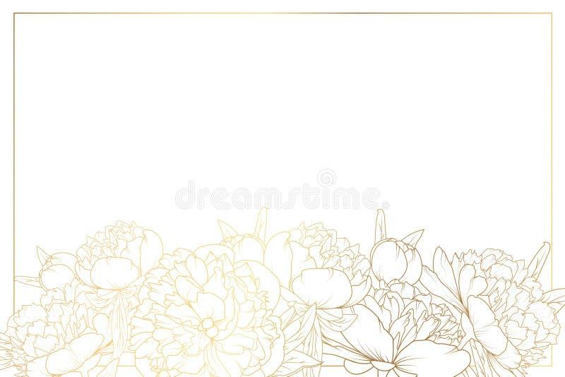Peony rose flowers border frame bottom horizontal vector illustration