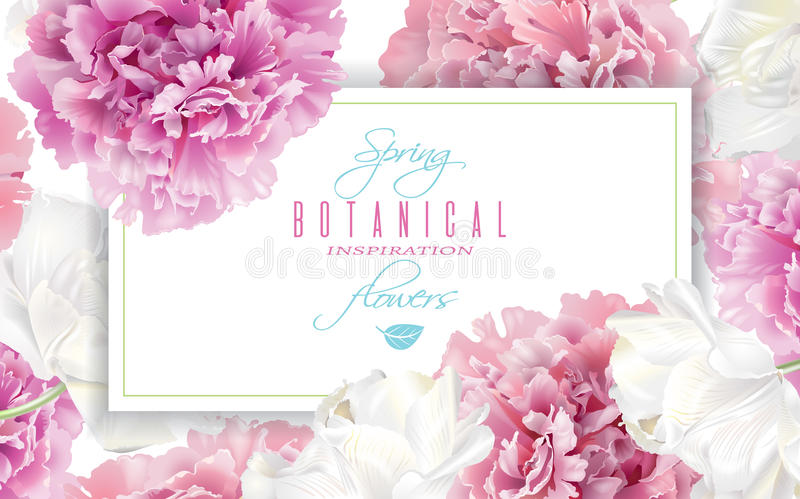 Peony tulip banner. Vector horizontal banner with pink peony and white tulip flowers on white background. Romantic design for natural cosmetics, perfume, women royalty free illustration