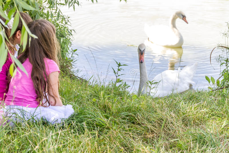 People and animals. Lovely charming kids playing having fun with stock images