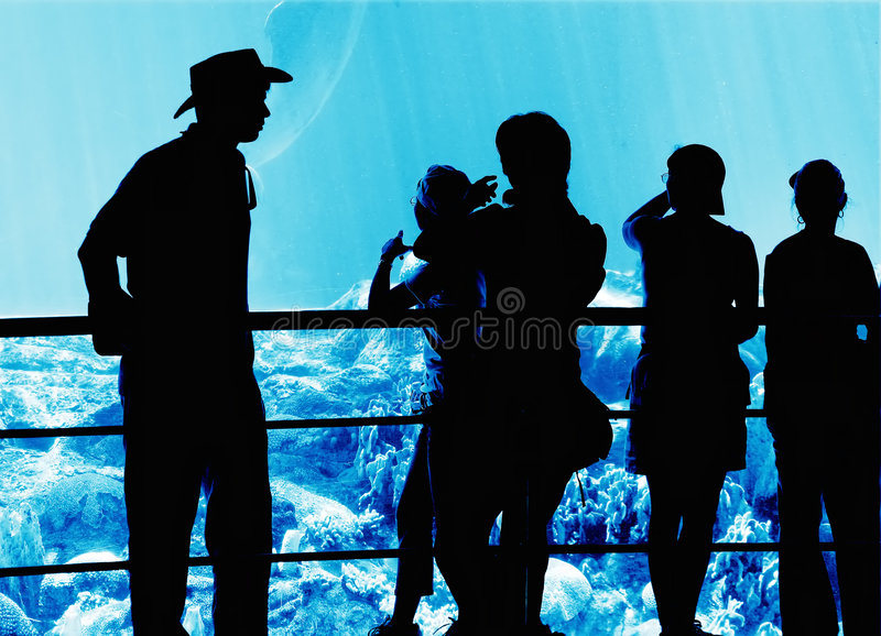 People in the aquarium stock photo