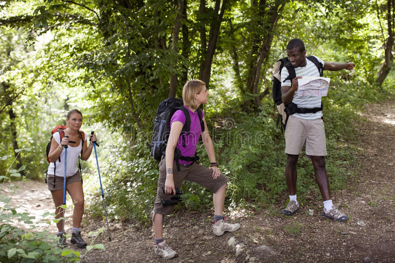People with backpack doing trekking in wood stock photo