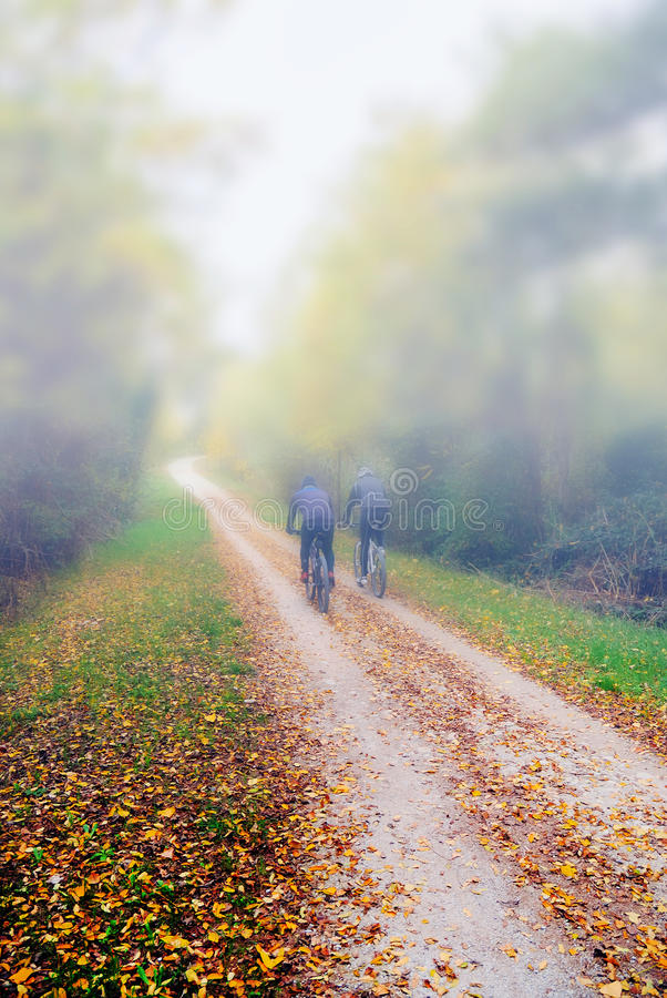 Download People with bikes stock photo. Image of journey, environment - 32064312