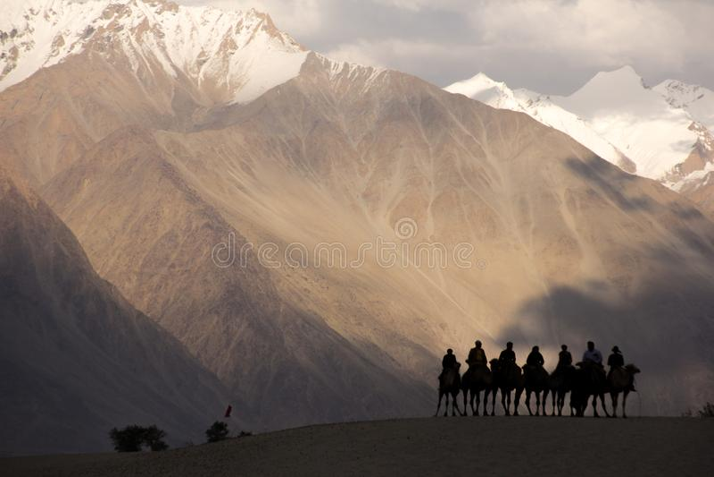 People on camel safari in beautiful Nubra valley. stock photos