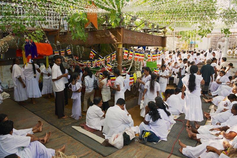 People celebrate Vesak religious festival in a Buddhist temple in Colombo, Sri Lanka. COLOMBO, SRI LANKA - MAY 17, 2011: Unidentified people celebrate Vesak stock photos