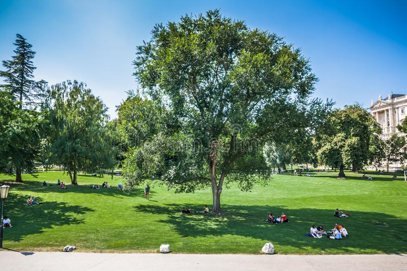 People are enjoying sunny day on grass in Burggarten park in vienna. They are sitting on neat lawn in the shadows of trees royalty free stock photo