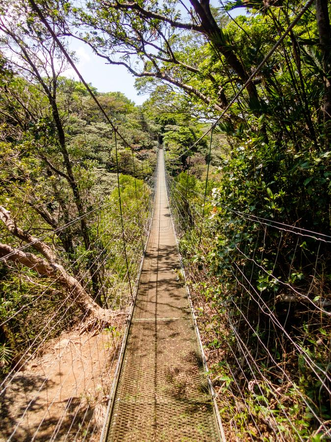 People crossing a hanging bridge over a valley on the side of Rincon De La Vieja volcano, Costa Rica stock photography