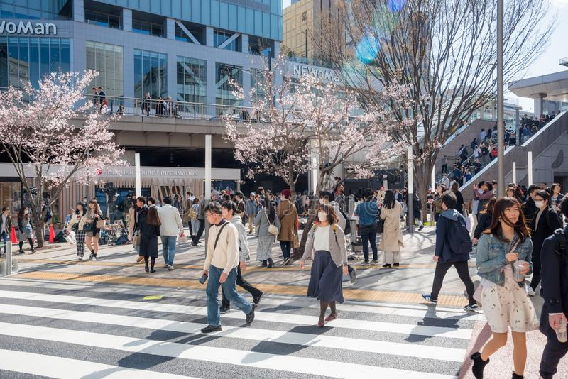 People Crossing a Street at a Zebra Crossing in Shinjuko, Tokyo. royalty free stock photos