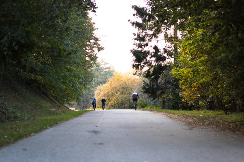 People cycling on a bicycling through a forest on a long road having fun. biker, biking, fall. landscape, healthy, fun, joy royalty free stock image