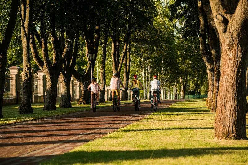 People cycling in summer park, back view. stock photos