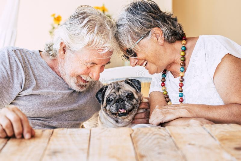 People and dog concept with couple of happy couple of senior mature man and woman smiling and having fun with their little puppy. People and dog concept with royalty free stock image