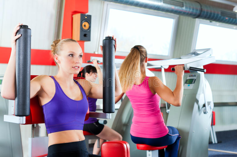 Download People Doing Strength Or Sports Training In Gym Stock Image - Image of sport, caucasian: 22404357