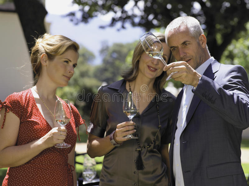 People drinking wine. royalty free stock image