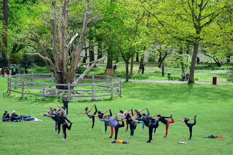 People engaged in fitness in the city Park at the old tree stock image