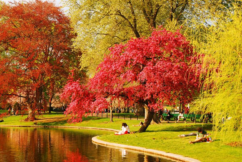 Spring in the Publik Garden, Boston. People enjoy a warm spring`s day in Boston`s Publik Garden royalty free stock photo