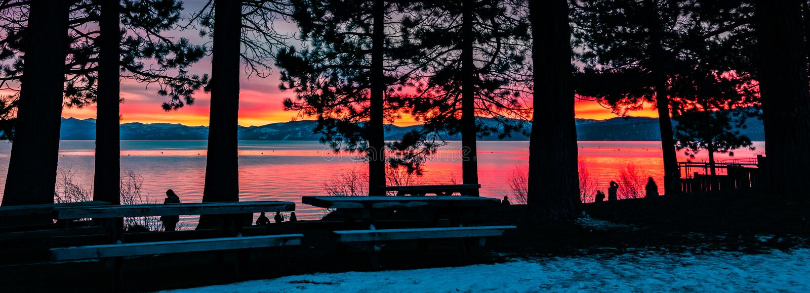 People enjoying an amazing sunset on the shoreline of Lake Tahoe; pine trees silhouettes in the foreground, California stock photo