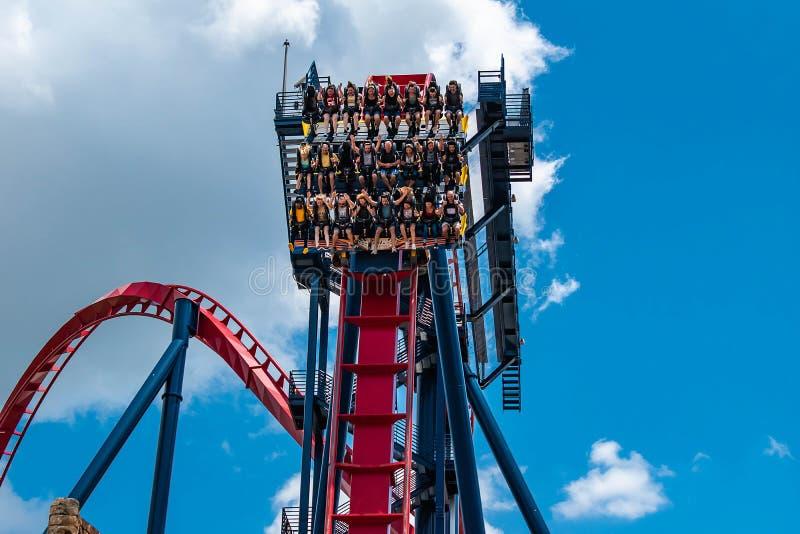 People enjoying terrific Sheikra rollercoaster at Busch Gardens 11. Tampa Bay , Florida. April 30 2019 . People enjoying terrific Sheikra rollercoaster at Busch stock images
