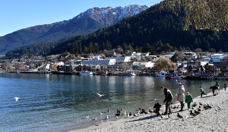 People feeding seagulls at Lake Wakatipu. stock photo