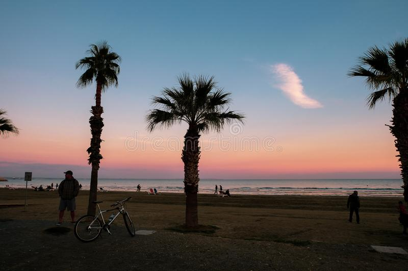 People at Finikoudes Beach, taking a stroll at sunset. Palm tree silhouettes and colorful sky in view. stock photo