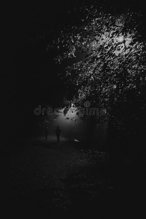 People in the fog in the park stock photos