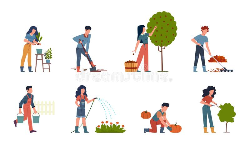 People gardening. Characters doing farming job watering, gathering, planting, growing and transplant sprouts using stock illustration