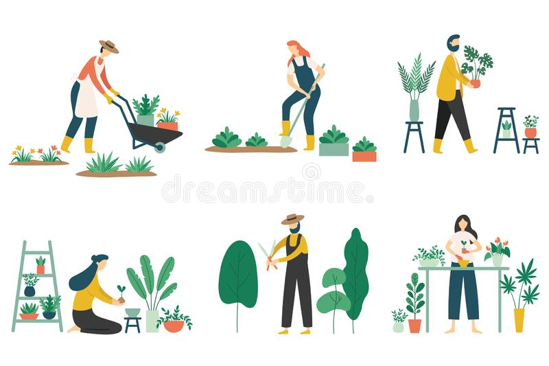 People gardening. Woman planting gardens flowers, agriculture gardener hobby and garden job flat vector illustration set royalty free illustration