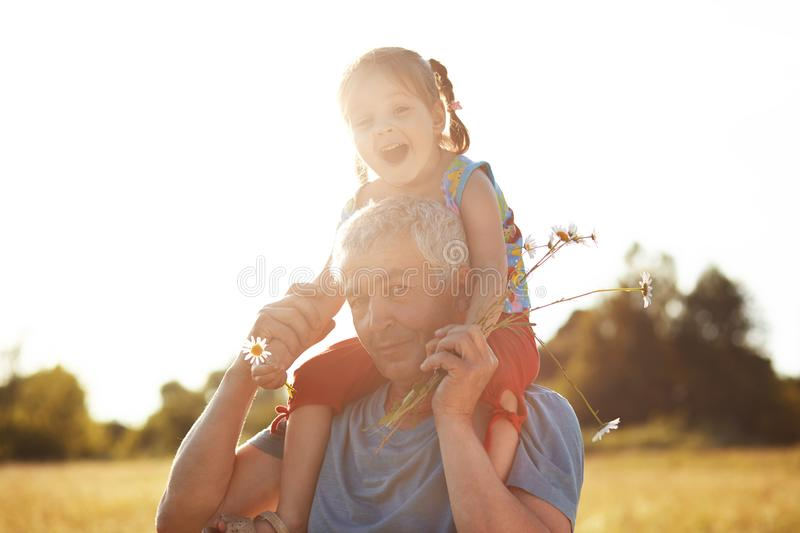 People, generation and relationship concept. Beautiful small female child has fun with her grandfather who gives piggyback ride, s. Troll across grassland, pick stock images