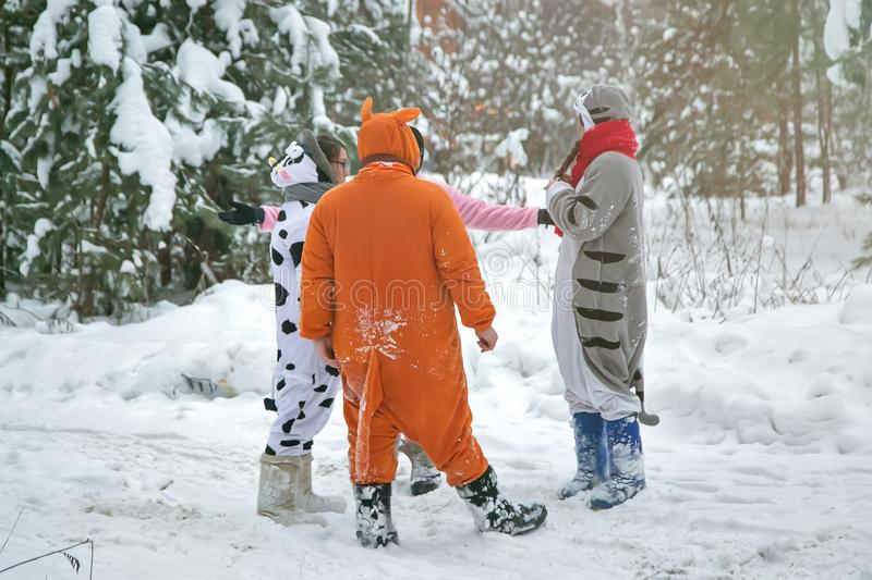 4 people, 2 girls and 2 mens in kigurumi in snow winter forest. Pajama costume pig cow kangaroo and cat. Fun with friends, walking.  stock images