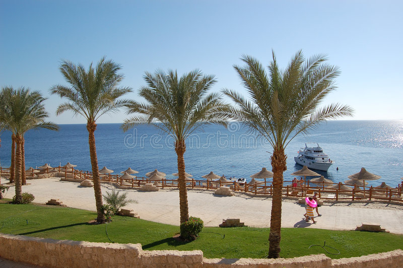 Download People go to the beach stock photo. Image of travel, sharm - 4201044
