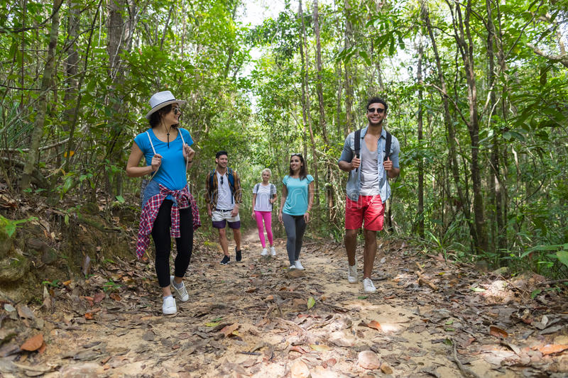People Group With Backpacks Trekking On Forest Path, Young Men And Woman On Hike. Mix Race Tourists Hiking stock photo