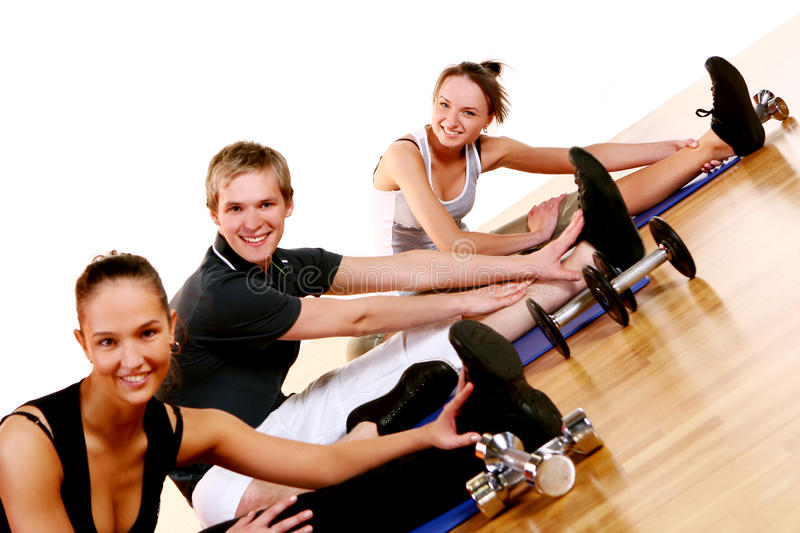 Download People Group  Doing Fitness Exercises Stock Photo - Image: 14851368