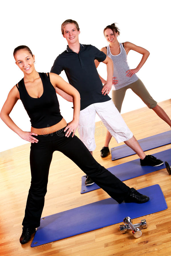 Download People Group  Doing Fitness Exercises Stock Image - Image: 14851371