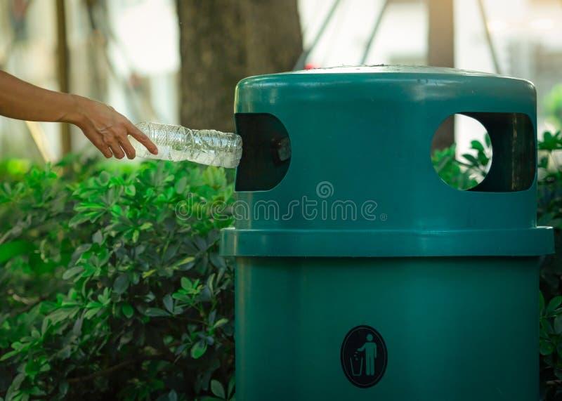People hand throwing empty water bottle in recycle bin at park. Green plastic recycle bin. Man discard bottle in trash bin. Waste. Management. Plastic bottle stock photo