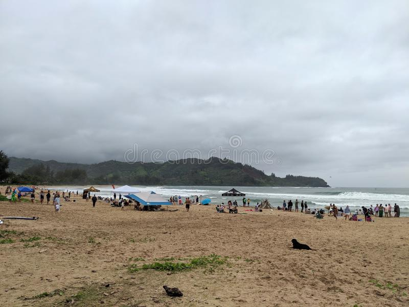 People hang out on Hanalei Beach with tents during Surf Contest royalty free stock image