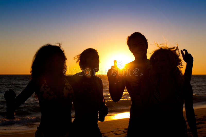 Download People Having Party At Beach With Drinks Stock Photo - Image: 18353746