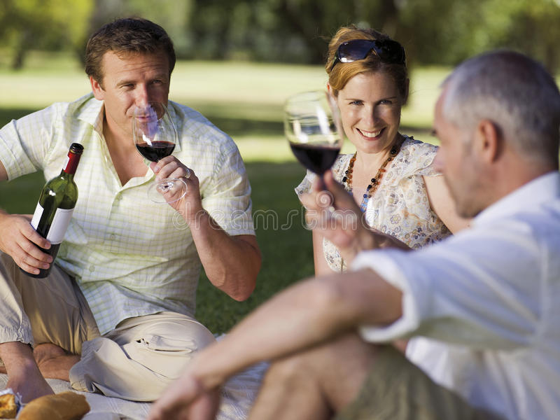 People having wine at a park. royalty free stock photography