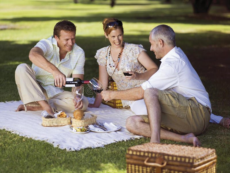 People having wine at a park. royalty free stock photos