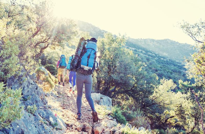 People in hike. In the mountains stock photo