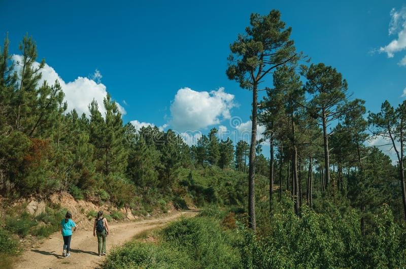 People hiking on dirt road over hilly terrain covered by trees. Serra da Estrela, Portugal - July 14, 2018. People hiking on dirt road over hilly terrain covered stock photography